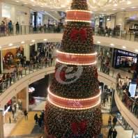 """إضاءة شجرة الميلاد في """"City Center"""" - محمد عمر"""