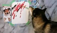 """بالصور: """"Hunter"""" كلب رسام جمع 5000 دولار من 150 لوحة فنية!"""