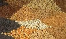 محصول الحبوب في رومانيا بلغ 7.4 مليون طن في 2014