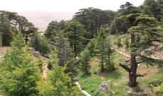 صفير: السياحة البيئية كانت الرافعة للإقتصاد الوطني في العشرة سنوات الأخيرة