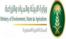 """""""البيئة السعودية"""" تطرح مشروع إنشاء مدينة تمور في المدينة أمام المستثمرين"""