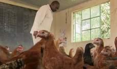 مباني المدارس في كينياتتحوّل إلى أقفاص للدجاج... والسبب؟