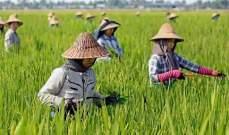 منظمة: العالم يهدر 2.5 مليار طن من المواد العذائية.. 40% من الإنتاج