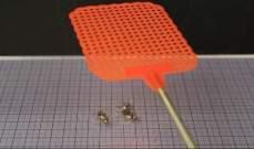 """""""دي.إي.انسيكت"""" روبوت يتحرك بسرعة 3 سنتيمترات في الثانية بالاعتماد على العضلات الصناعية"""