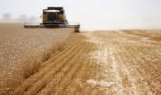 روسيا تعتزم رفع ضريبة تصدير القمح اعتبارا من أول آذار 2021