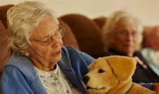 تطوير كلب آلي للأشخاص المصابين بمرض ألزهايمر