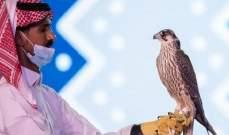 الصدفة قادت سعودي لبيع صقره بسعر خيالي!