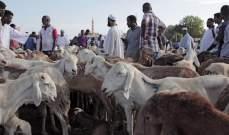 السودان يستأنف تصدير الماشية بعد 4 أشهر من التوقف