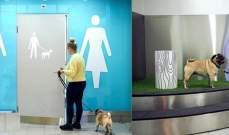 مطار هلسنكي يخصص دورات مياه للحيوانات الأليفة