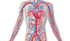 الذكاء الاصطناعي يساعد الأطباء على اكتشاف تمدد الأوعية الدموية