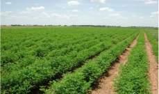 تركيا والسودان تبرمان إتفاقيات في مجالي الزراعة والثروة الحيوانية