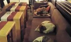 مطعم يوناني يستضيف الكلاب الضالة ليلاً!
