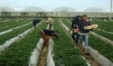 الحكومة الفلسطينية توقف استيراد الخضار والدواجن الإسرائيلية