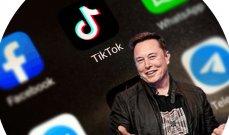 """تصنيف """"كانتار"""": تيسلا وتيك توك أسرع الشركات نمواً في 2020"""