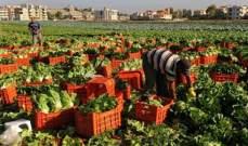 نمو صادرات المحاصيل الزراعية الإيرانية بنسبة 30%