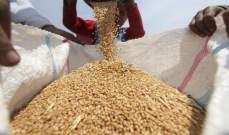 مصر تشتري 300 ألف طن من القمح الفرنسي والروماني