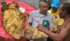 """""""قيء الحوت"""" غيّر حياة صياد تايلاندي وأكسبه 325ألف دولار!"""
