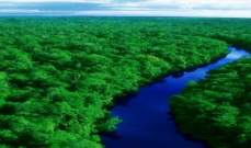 باحثون يستخدمون طائرات بدون طيار لدراسة غابات الأمازون المطيرة