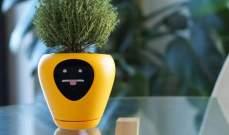 """lua""جهاز ذكي يتيح للنباتاتإطلاق 15 شعورا مختلفا"