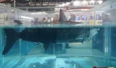 الكشف عن قرش الكتروني خلال معرض للتكنولوجيا العسكرية الصينية
