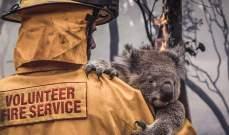 حملة تبرعات في دبي لضحايا الحرائق في أستراليا