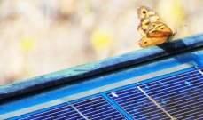 """""""بلومبرغ"""": الطلب على الطاقة الشمسية سينخفض بسبب """"كورونا"""""""