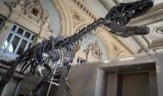 """هيكل ديناصور للبيع في مزاد في برج """"إيفل"""" بـ2.22 مليون دولار"""