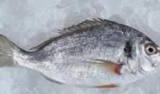 دعوة لمقاطعة السمك في المغرب بسبب ارتفاع الاسعار