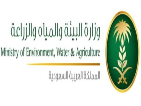 """وزارة الزراعة السعودية: """"برنامج التنمية الريفية"""" يوفر 19 % من احتياجات المملكة الغذائية"""