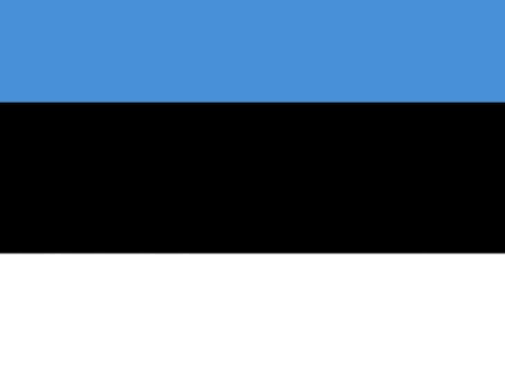 الحكومة الاستونية تعلق تنفيذ مشروعالسكك الحديدية الأطول في العالم