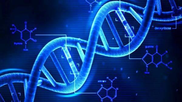 """خدمة لاختبار الـ""""DNA"""" تعرض آلاف السجلات الوراثية لعملائها للاختراق"""