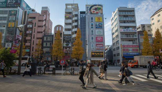 فنادق يابانية تخسر 1.04 مليون دولار بسبب أم وابنها... كيف؟