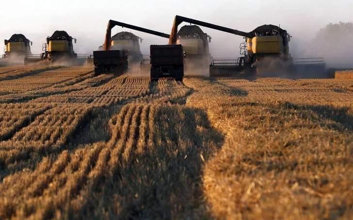 مصر تسعى لشراء كمية غير محددة من القمح للشحن في 21-31 آب