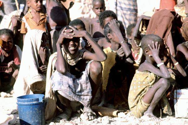 الجفاف والجراد يهددان الصومال بالمجاعة