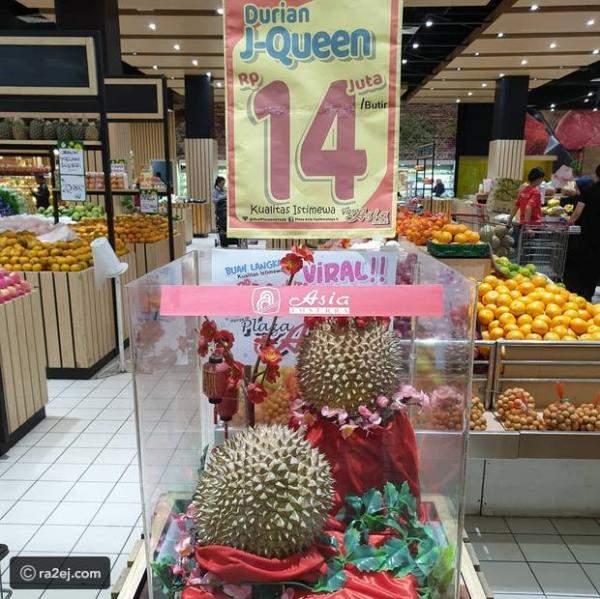 أغلى فاكهة في العالم بألف دولار!