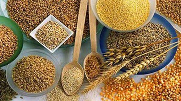 روسيا: الحبوب تبحر إلى بلدان عربية بينها مصر وسوريا