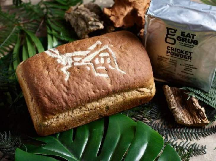 خبز مصنوع من الحشرات المطحونة والطحين... هل تجرؤ على تذوقه؟